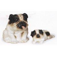 ブルドッグ(白)(左側) ブルドッグ仔犬(白)(右側)