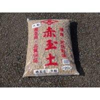 赤玉土 大粒(20ℓ)