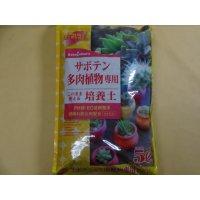 選別鹿沼サボテン多肉植物専用培養土(5ℓ)