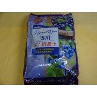 ブルーベリー専用培養土(12ℓ)