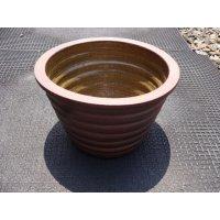 睡蓮鉢(4)