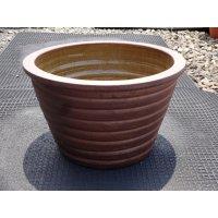睡蓮鉢(7)
