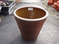 睡蓮鉢(16)