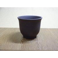 エビネ鉢帯入(ウ泥) 3号