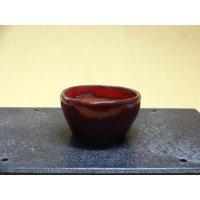 鶏血小鉢(4)